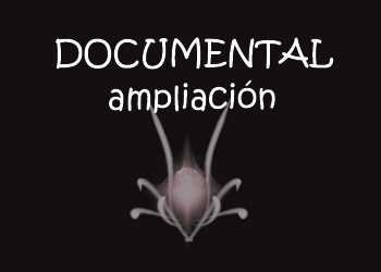 anvistas-ampliacion