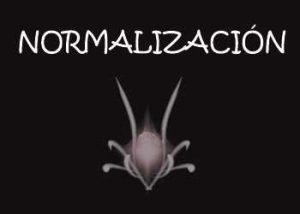 anvistas-normalización