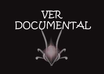 logo anvistas