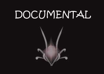 documental-anvistas