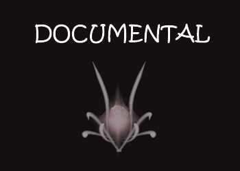 documental-anvistas